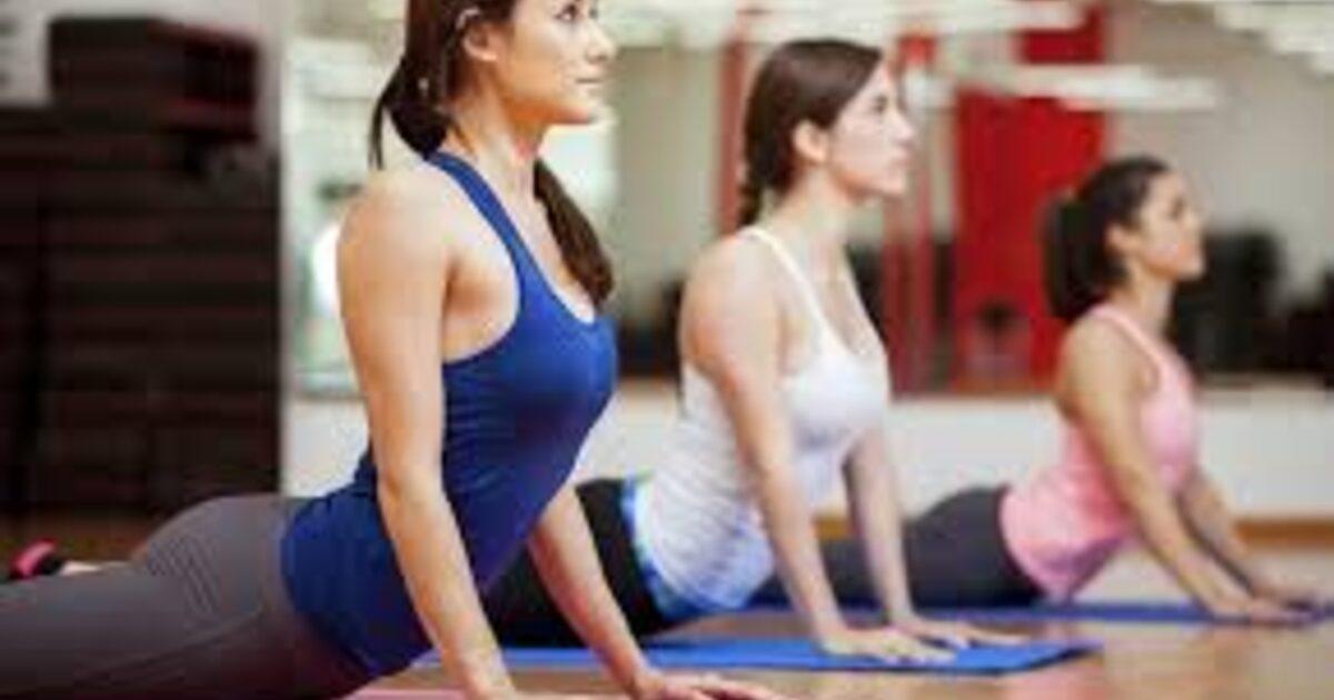 phd psychology program  advocacy  yoga